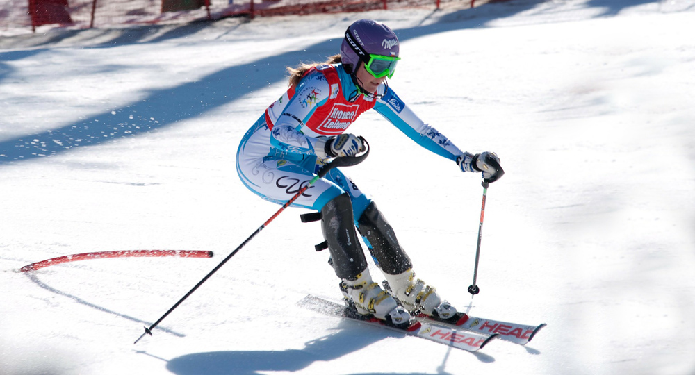 Skiweltcup