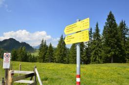 Wandern am Grafenberg