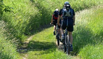Mountainbiken Windischgarsten