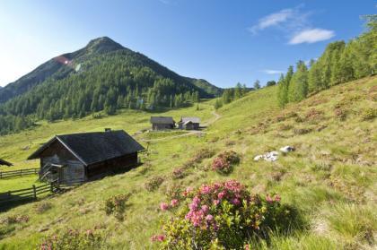 Klettersteig Zauchensee : Zauchensee bergsport sommersport sport oesterreich at